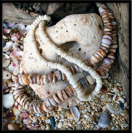 Custom for Ted Large White Puka Shell Necklace