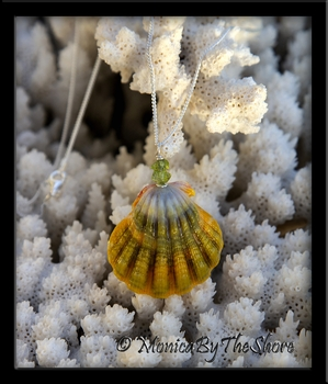 "Hawaiian ""Moonrise"" Green and Gold Sunrise Shell Peridot Necklace"