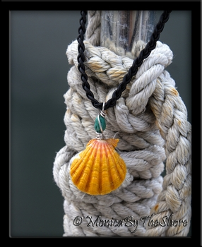 Jumbo Hawaiian Sunrise Shell and Turquoise Black Rolled Leather Necklace