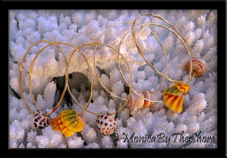 North Shore Golden Puka Shells and Gold & White Baby Conch Shell Gold Bangle Bracelet