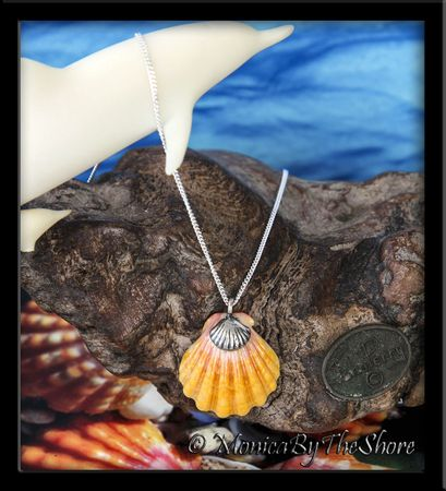 Pink & Yellow Hawaiian Sunrise Shell Sterling Silver Charm Necklace