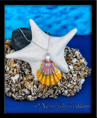 """Rainbow"" Hawaiian Sunrise Shell and Pearl Silver Necklace"