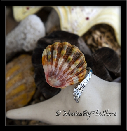 Rootbeer Colored Hawaiian Sunrise Shell Slant Wrap Silver Ring