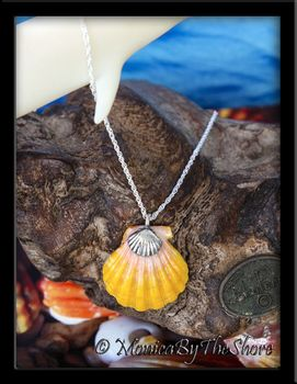Soft Pink & Yellow Hawaiian Sunrise Shell Sterling Silver Shell Charm Necklace
