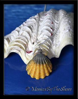 Unique Blue and Yellow Hawaiian Sunrise Shell Silver Necklace