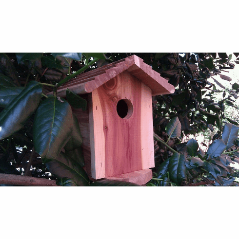 Battery Powered SecureGuard Birdhouse Spy Camera (30-90 days)