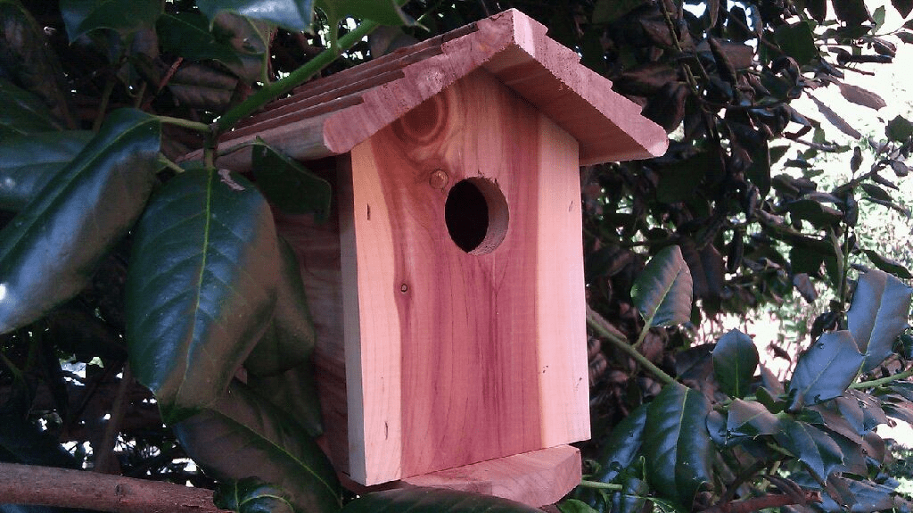SecureGuard HD Wireless 4G Birdhouse Spy Camera