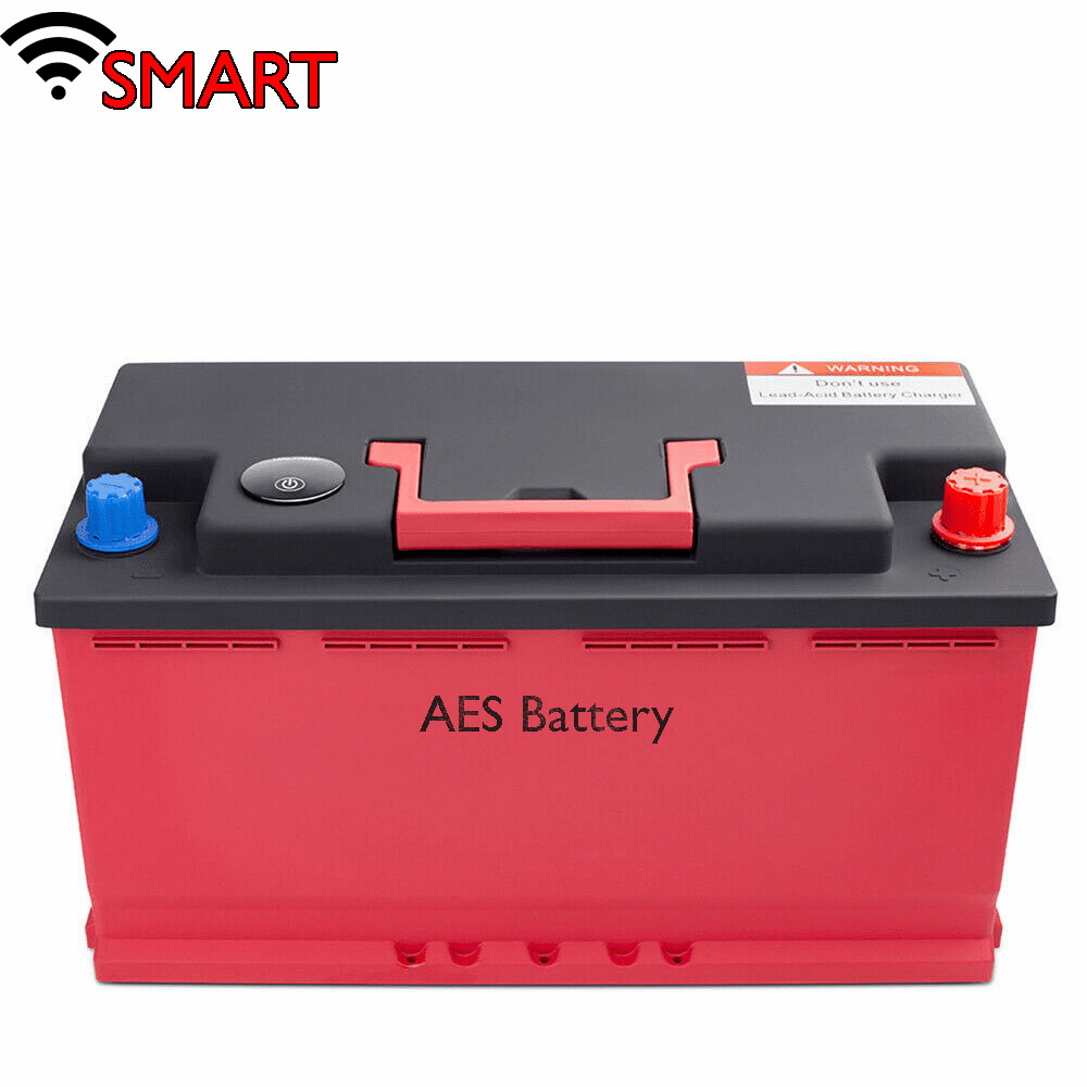 SMART Lithium Iron LiFePO4 Energy Storage Deep Cycle w/BMS Battery Pack