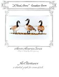 A Head Above - Canadian Geese