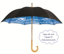 "48"" Blue Sky Stick Umbrella"