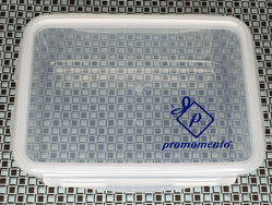 Food Storage Container with Flap Locks