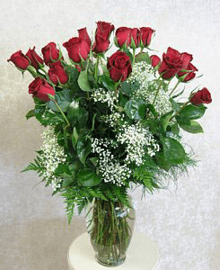 Two Dozen Roses  With Babies Breath
