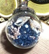 """Glass Ball blue send with dried flower & small seashell Pendant with 18"""" leather necklace"""