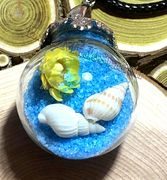 "Glass Ball blue send with dried flower & small seashell Pendant with 18"" leather necklace"