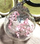 "Glass Ball pink dried flower Pendant with 18"" brown leather necklace"