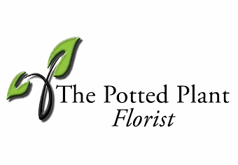 The Potted Plant, Cottleville, MO