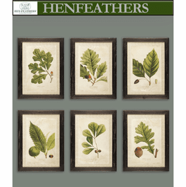 Arborist Framed Prints - Set of 6