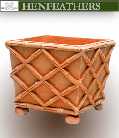 Bamboo Box Planter by Mario Nievera