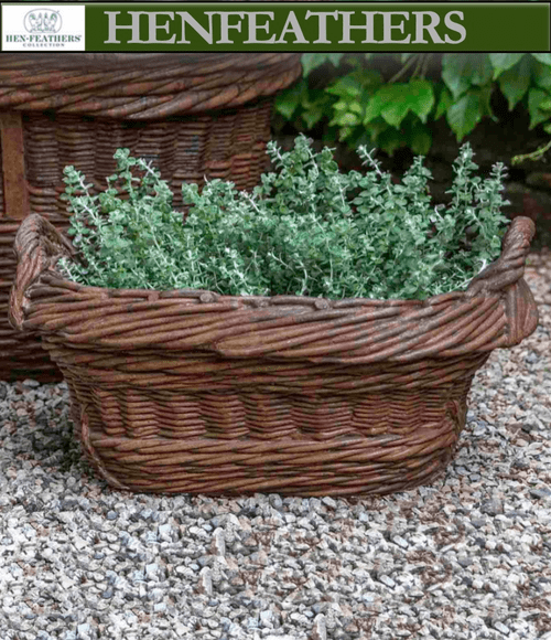 Olive Harvest Basket
