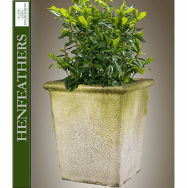 Furness Planter {USA}n