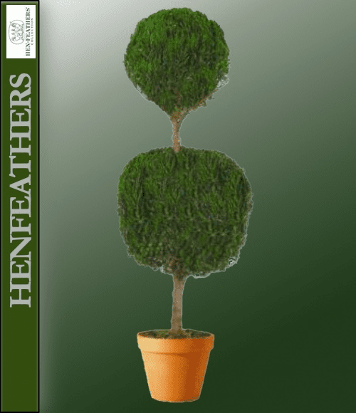 Juniper Double Ball Preserved Topiary