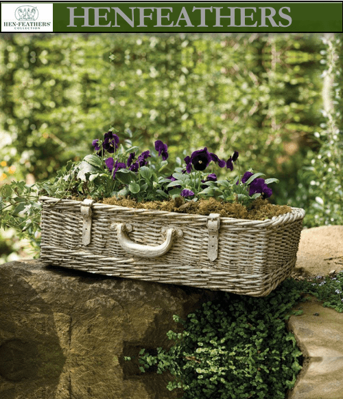 Piquenique Planter (n)