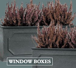 Planter Window Boxes
