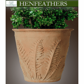 Woodland Fern Study Planter
