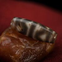Tibetan Old Tiger Teeth DZI Bead