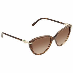 Bvlgari BV8211B 546513 55  Ladies  Sunglasses