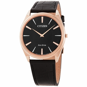 Citizen AR3073-06E Stiletto Mens Eco-Drive Watch