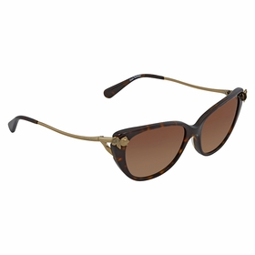 Coach 0HC8242B 548574 55  Ladies  Sunglasses