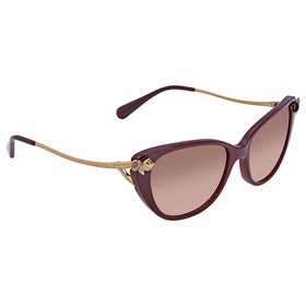 Coach 0HC8242B 552011 55  Ladies  Sunglasses