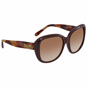 Coach HC8207 553113 57    Sunglasses
