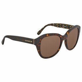 Coach HC8231 550773 54    Sunglasses