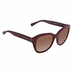 Coach HC8231 550973 54    Sunglasses
