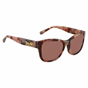 Coach HC8243F 552875 55  Ladies  Sunglasses