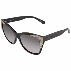 Coach HC8244 500211 56    Sunglasses
