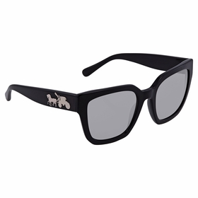 Coach HC8249 500287 53    Sunglasses