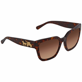 Coach HC8249 541713 53  Ladies  Sunglasses