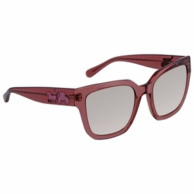 Coach HC8249 55278Z 53 HC8249   Sunglasses