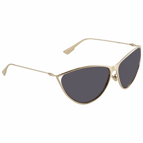 Dior DIORNEWMOTARD 0J5G 65  Ladies  Sunglasses