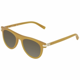 Salvatore Ferragamo SF787S 729 51 SF787S   Sunglasses