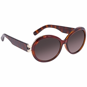 Salvatore Ferragamo SF799SA 214 57    Sunglasses