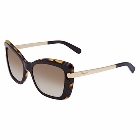 Salvatore Ferragamo SF814S 006 54 SF814S   Sunglasses