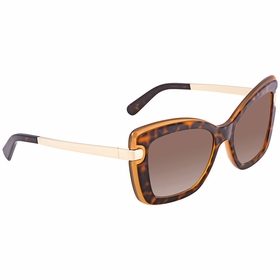 Salvatore Ferragamo SF814S 226 54 SF814S   Sunglasses