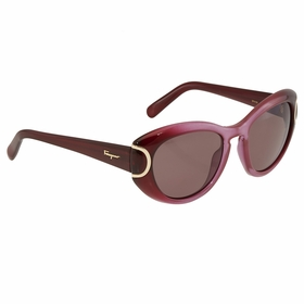 Ferragamo SF818S 605 54  Ladies  Sunglasses