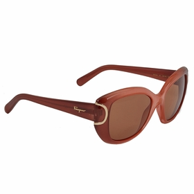Ferragamo SF819S 811 54  Ladies  Sunglasses