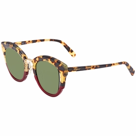 Salvatore Ferragamo SF830S28348 SF830S   Sunglasses