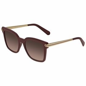 Salvatore Ferragamo SF832S60652 SF832S Ladies  Sunglasses